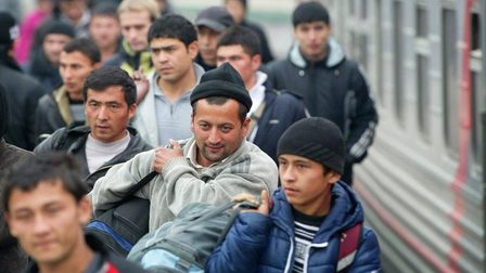 Migration_thumb_main